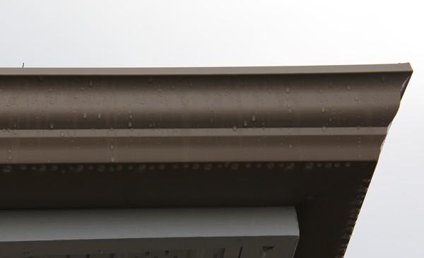 Super Crown Detail